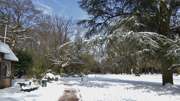 Un coin de nature (Jardin Vauban)
