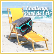 Challenge Pavé 2013 gd format