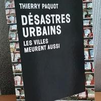 """""""Désastres urbains - Les villes meurent aussi"""", Thierry PAQUOT"""