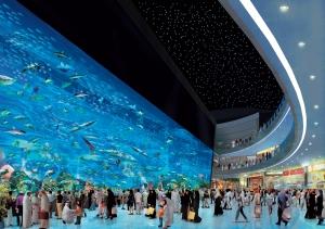 L'aquarium géant du Dubai Mall
