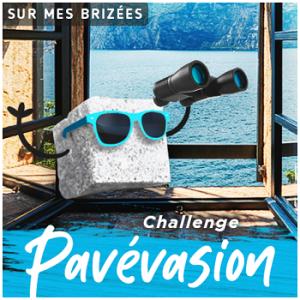 https://surmesbrizees.files.wordpress.com/2020/03/logo-challenge-pavc3a9vasion-moymle.png?w=300&h=300
